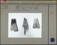 Peignes pour chignons (?) en ivoire