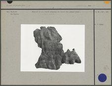 Fragment de peau tannée : traces d'un pigment
