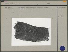 Bloc de basalte portant une inscription