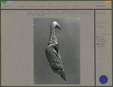 Fragment de propulseur, oiseau