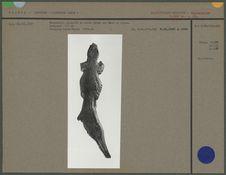Salamandre sculptée en ronde bosse, bois de renne