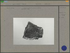 Gravure de tête de cheval en pierre