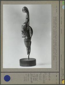 Vénus de Lespugue, profil
