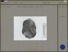 Biface ovale irrégulier