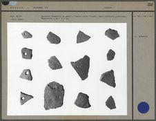Quatorze fragments de poterie