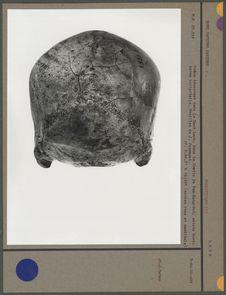 Crâne découvert dans le Haut Laos, Tam-Hang-Sud