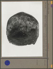 Crâne découvert dans la Grotte de Tam-Hang-Sud