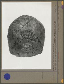 Norma verticalis du crâne, Abri sous roche de Tam-Pong