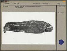 Sarcophage fermé avec à l'intérieur une momie