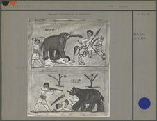 Peintures, chasseurs d'éléphant et chasseurs de rhinocéros
