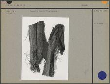 Fragment de tissu en fibres
