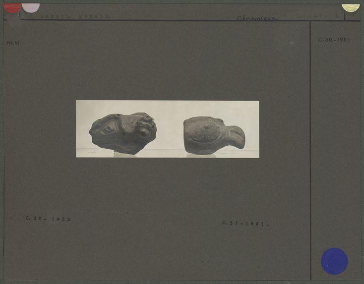 Fragment de vase en terre cuite, tête de perroquet et fragment de vase en terre cuite, rebord décoré