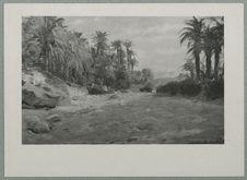 Paysage du sud algérien