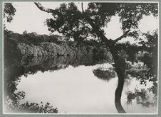 Le Niger près de sa source