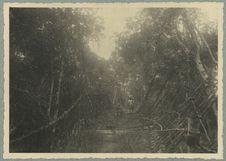 Pont sur la Boa, Route de Touba