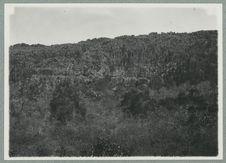 Aspect de la montagne dans la province de Diego Suarez