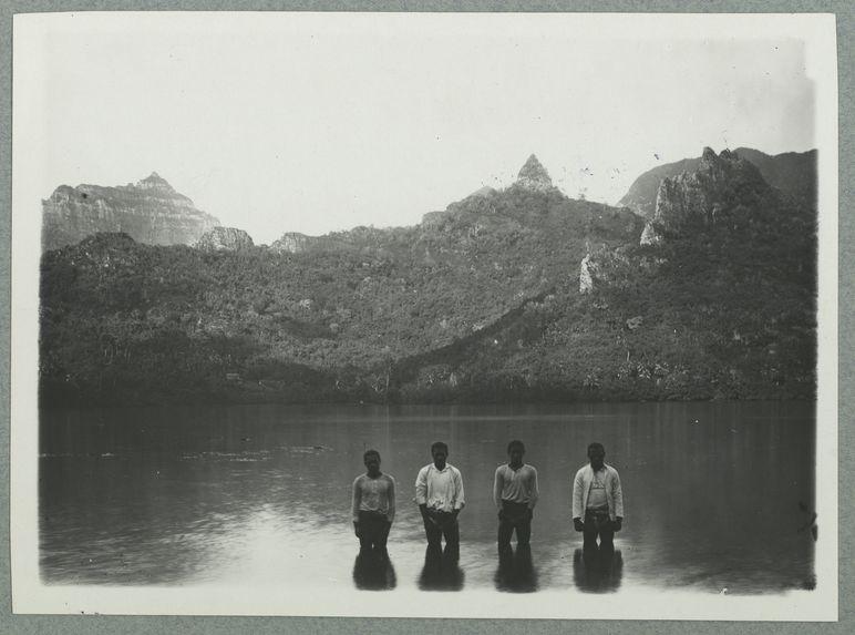 Mooréa. Baie d'Opunohu