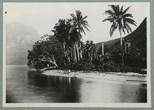 Entrée de la baie d'Opunohu à Mooréa