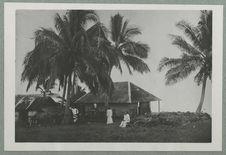 Tahiti. Un plateau sur le bord de mer