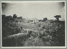 Guadeloupe ; compagnie du camp Jacob ; le jardin