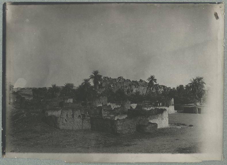 Ksar de Djado [vue générale de la ville. Palmiers]