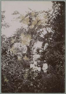 Libreville [Européens en forêt]