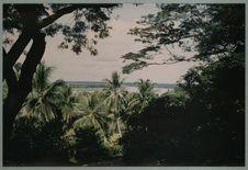 Le Sepik vu de la colline de Marienberg (Mission)