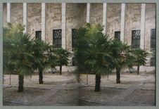 Sans titre [palmiers et façade du musée national des arts d'Afrique et...