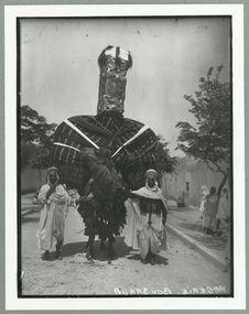 Chameau [?] pour une cérémonie