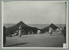 El-goléa. Campement de nomades Claambas