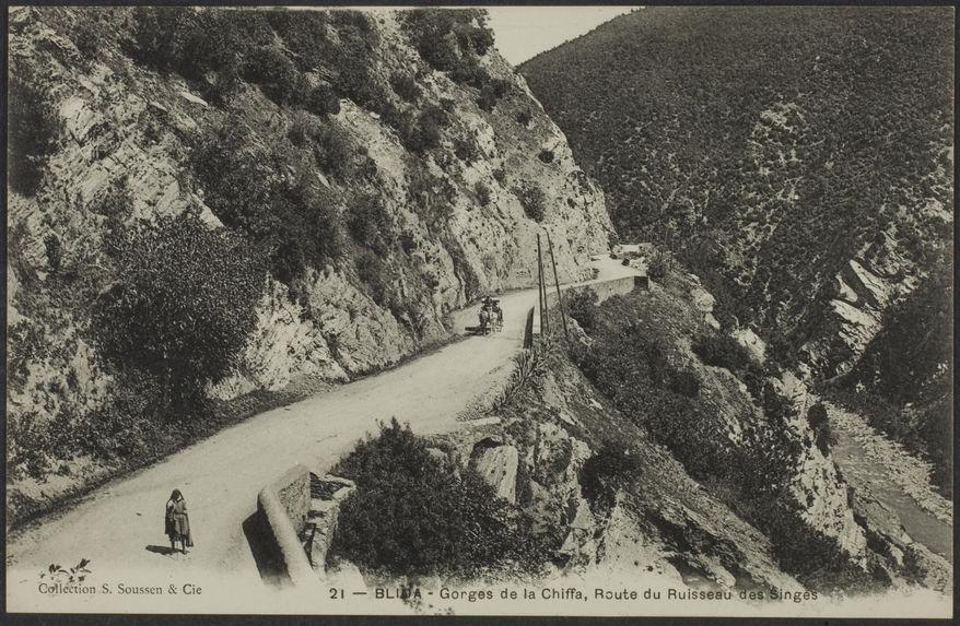 Blida - Gorges de la Chiffa, Route du Ruisseau des Singes