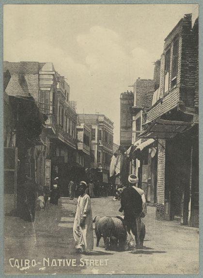 Cairo. Native street
