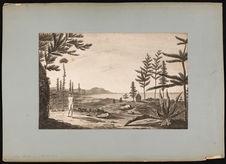 Vue de l'isle des pins