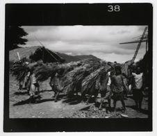 Mapos 1. Les femmes apportent l'herbe à la maison du pasteur