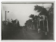 Curepipe Road