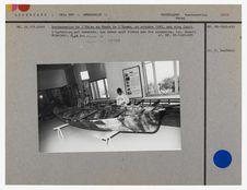 Restauration de l'Umiaq au musée de l'Homme par cinq Inuit