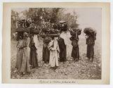 781. Paysannes de Palestine transportant du bois