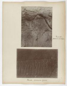 Karnak. Prisonnier asiatique