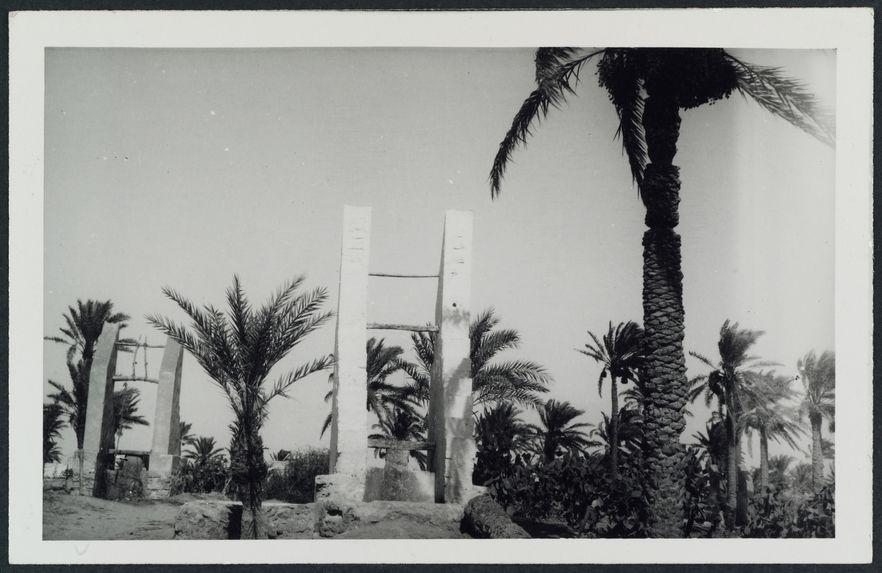 Puits dans l'oasis de Tripoli