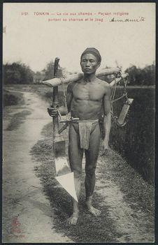 Paysan indigène portant sa charrue et le joug
