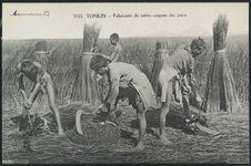 Fabricants de nattes coupant des joncs