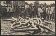 Kindu, un commerçant en ivoires