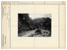 Chemin de fer du Centre. Tranchée km 184