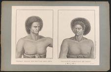 Toubau, fils du Roi des Iles des Amies. Vouacécé, habitant de Fidgi