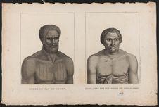 Homme du cap Diemen. Finau chef des guerriers de Tongatabou