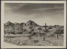 Le désert autour de Phoenix. A l'angle gauche, macadam de trottoir de la ville