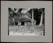 Une maison de Vanicoro