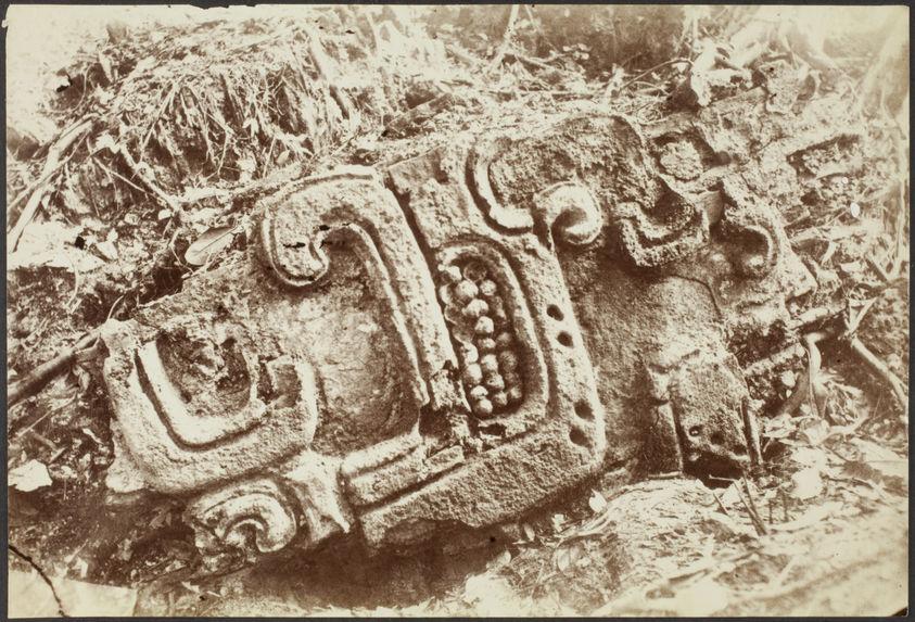 Comalcalco. Bas-relief provenant de la tour n°1