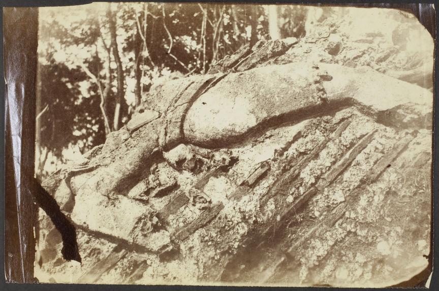 Comalcalco. Bas-relief provenant de la tour n°2