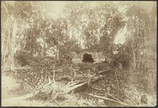 Palenque. Palais en ruine au nord du grand palais